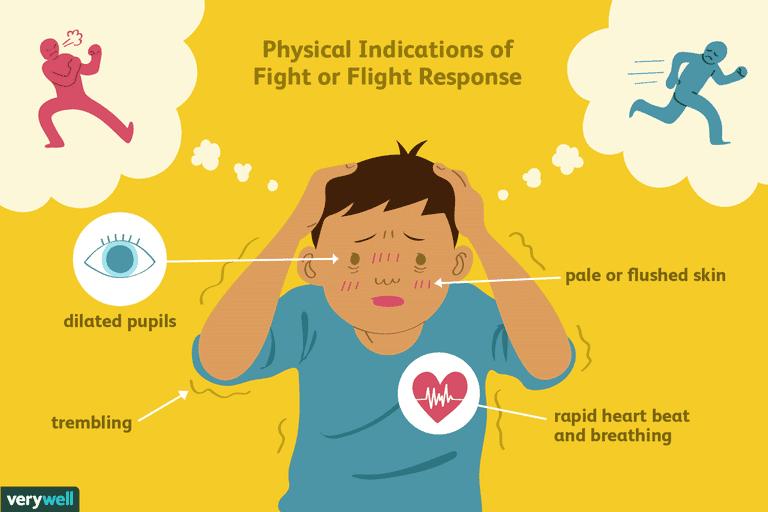 understand stress response