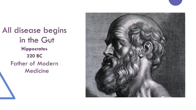 All disease begins in gut
