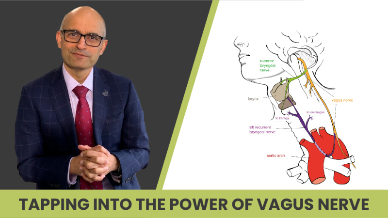 Tapping Into The Power Of Vagus Nerve for Weight Loss